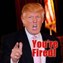 donald your fired