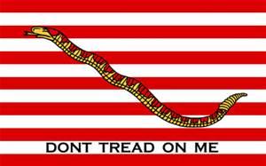 Navy Flag American
