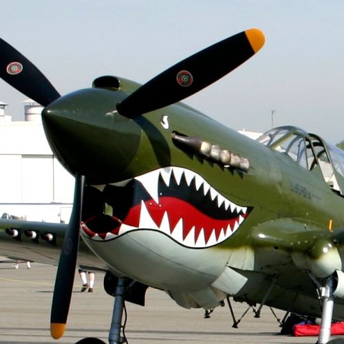 P-40 Warhawk- Photo Credit Sarah Vaughan